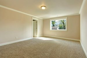 Install Carpets